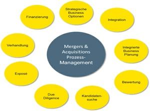 Prozessmanagement bei Mergers & Acquisitions